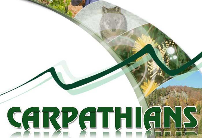 Carpathian Opportunity